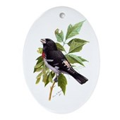 Rose-breasted Grosbeak Oval Ornament