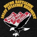 1st Attack/Recon Battalion - 101st Aviation Regime