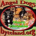 Merry Christmas Angel Dogs T-Shirt