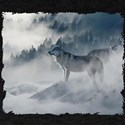 Grey Wolves In Winter T-Shirt