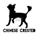 Chinese Crested Dog Designs Shirt