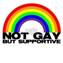 Not Gay But Supportive Women's T-Shirt