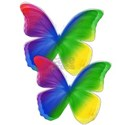 Rainbow Pride Butterflyes T-Shirt