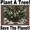 Plant A Tree! Save The Planet! T-Shirt