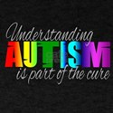 Autism teacher T-Shirt