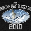 I Survived Boxing Day Blizzard 2010 - NYC T-Shirt